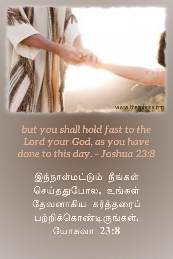 Joshua-23-8